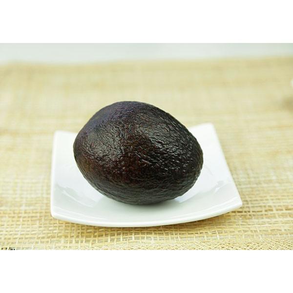 アボカド 『 ハス 』 2年生 実生苗 5号鉢植え 希少 (アボガド)|produce87|03