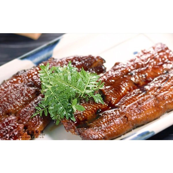 山椒 『 朝倉サンショウ 』 10.5cmポット接木苗|produce87|05