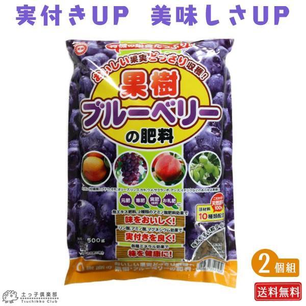 果樹・ブルーベリーの肥料 2個セット ( 送料無料 ) 500g