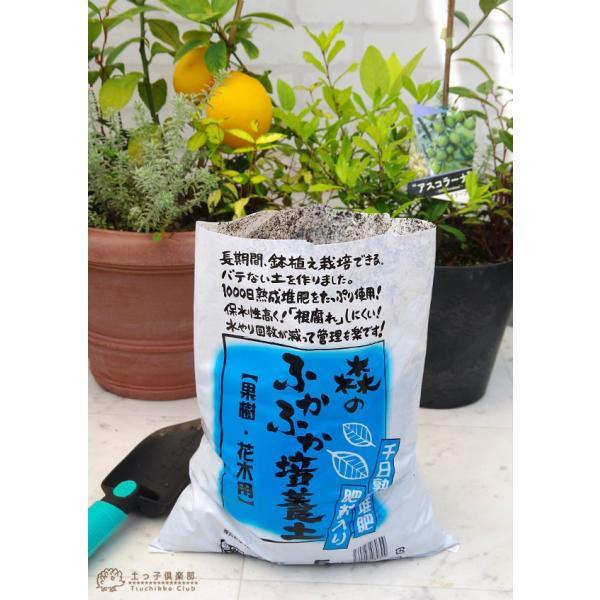 森のふかふか培養土 『 果樹花木用 』 5リットル 最高品質 培養土|produce87|04