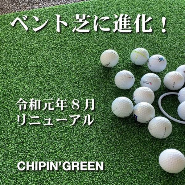 屋外可・ アプローチ&パット専用人工芝 チップイングリーン[CHIPIN'GREEN]90cm×5m ゴルフ 練習|progolf|04