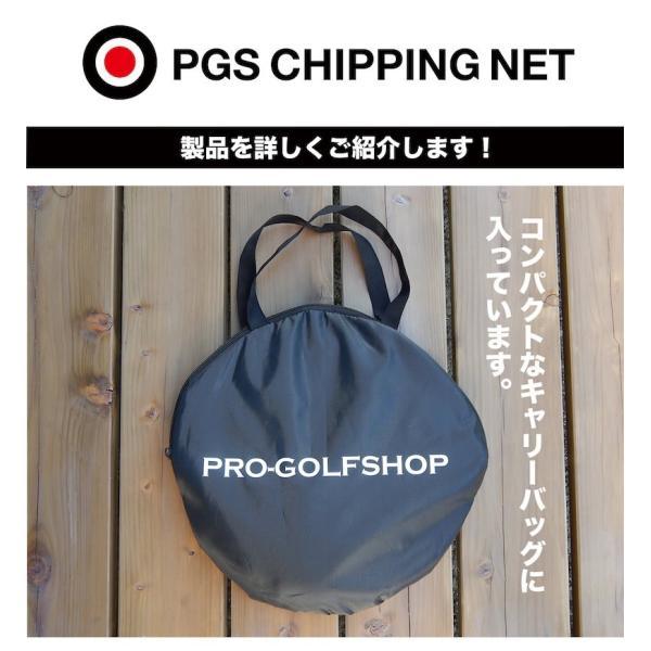 アプローチ 練習ネット PGSチッピングネット ゴルフ 練習 progolf 10