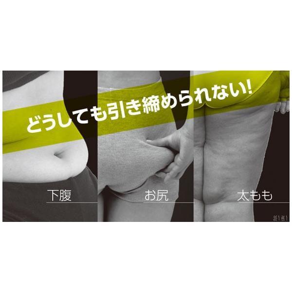 ダイエット 器具 背中 下腹 お腹 くびれ ウエスト 太もも 背中バランスダイエット|proidea|02