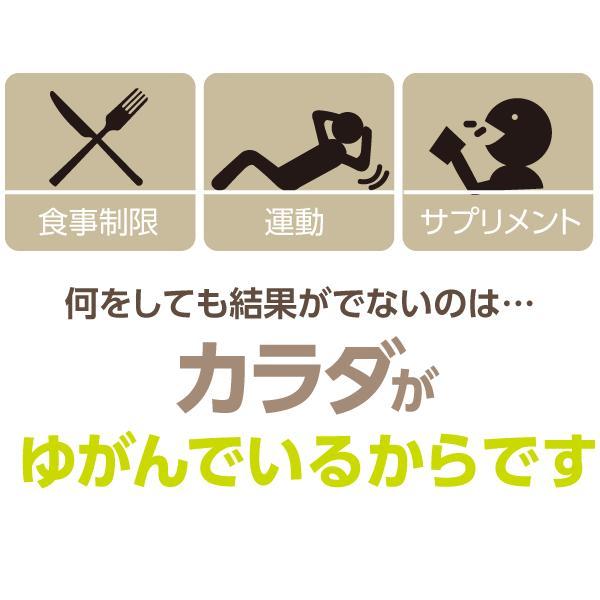 ダイエット 器具 背中 下腹 お腹 くびれ ウエスト 太もも 背中バランスダイエット|proidea|05