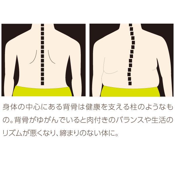 ダイエット 器具 背中 下腹 お腹 くびれ ウエスト 太もも 背中バランスダイエット|proidea|06