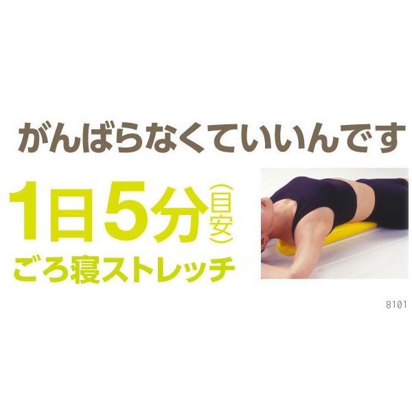 ダイエット 器具 背中 下腹 お腹 くびれ ウエスト 太もも 背中バランスダイエット|proidea|07