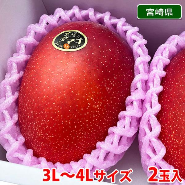 【送料無料】宮崎県産 完熟マンゴー 太陽のタマゴ 秀品・3L〜4Lサイズ 2玉入り(化粧箱)