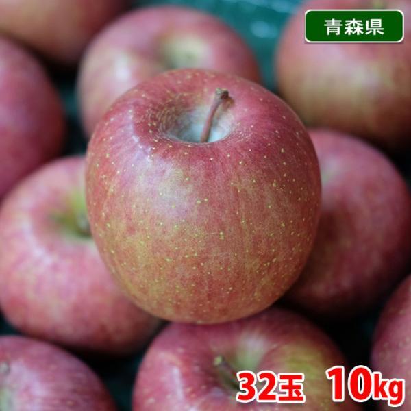 【送料無料】青森県産 サンふじりんご 等級A・32玉入り 10kg(CA貯蔵)