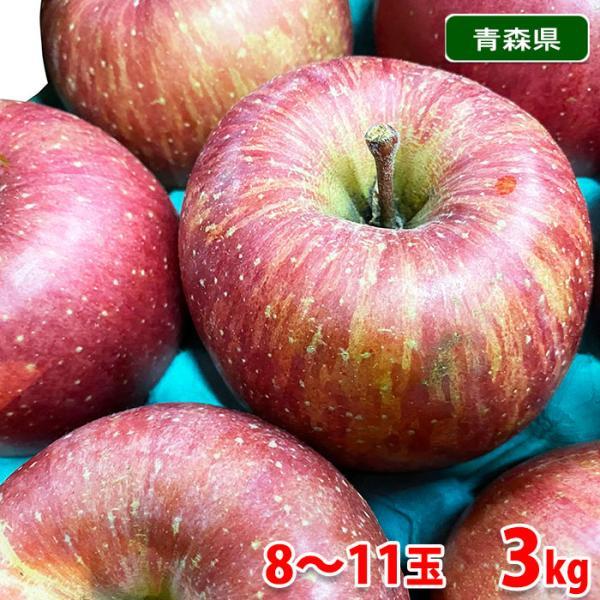 ご家庭用(訳あり) 青森県産 サンふじりんご 8〜11玉入 3kg箱