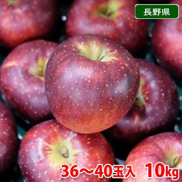 送料無料 長野県産 りんご 秋映(あきばえ) 秀品 36〜40玉入 10kg(箱)