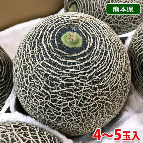 熊本県産 肥後グリーン メロン 3L〜Lサイズ 4〜6玉入り(箱)