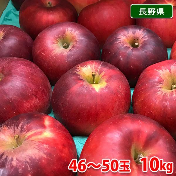 送料無料 長野県(または青森県)産 紅玉 秀品 46〜50玉 10kg(箱)