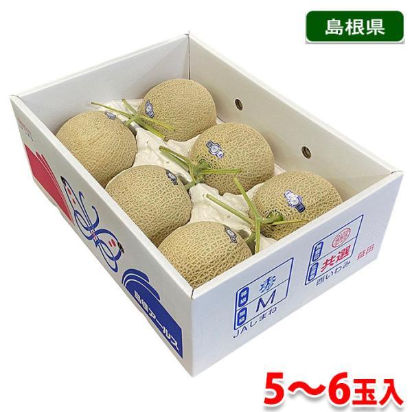 島根県産 アールスメロン 秀品 5〜6玉入 (箱)