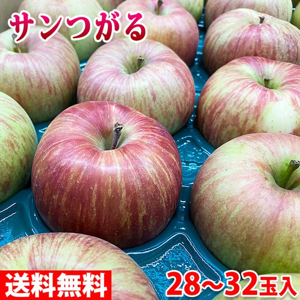 【送料無料】 長野県産 サンつがる(早生)秀品 28〜32玉入り 10kg(箱)