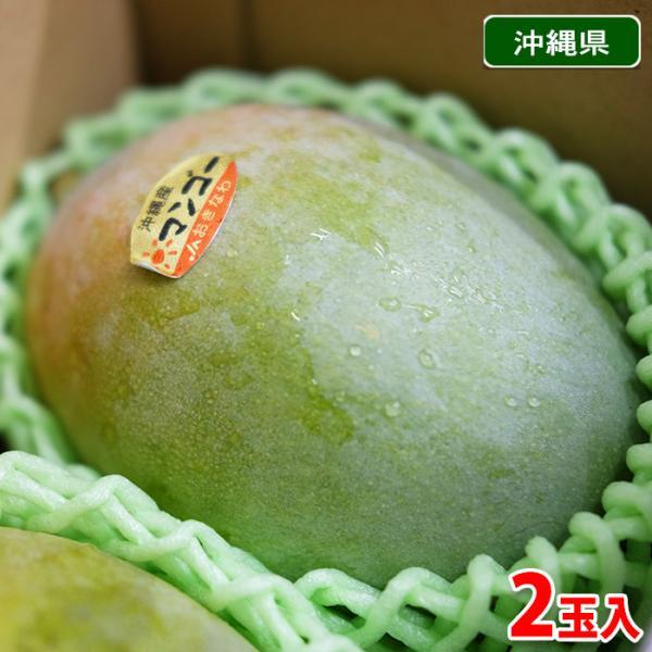 沖縄県産 キーツマンゴー 秀品 約500g×2玉入(化粧箱)