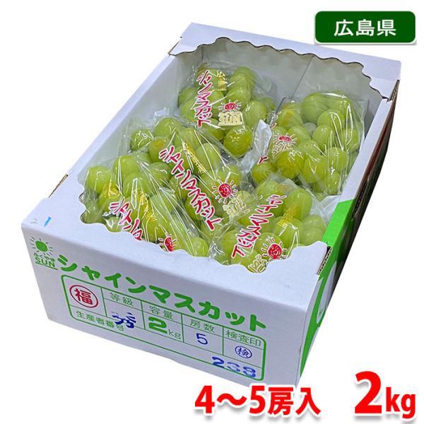 広島県産 シャインマスカット 秀品 4〜5房入 2kg