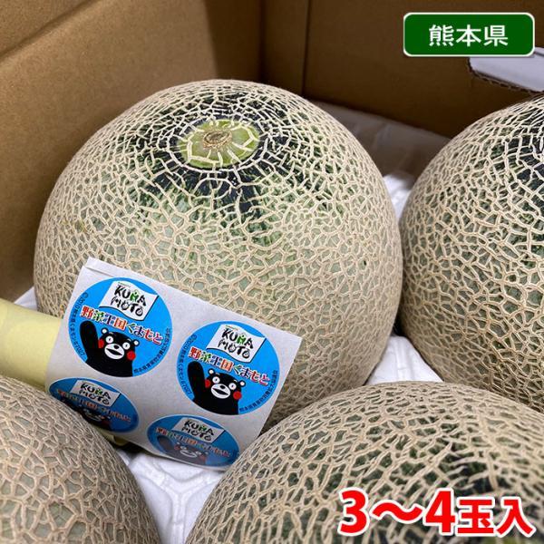 【送料無料】熊本県産 アンデスメロン 3〜4玉入り(1箱)