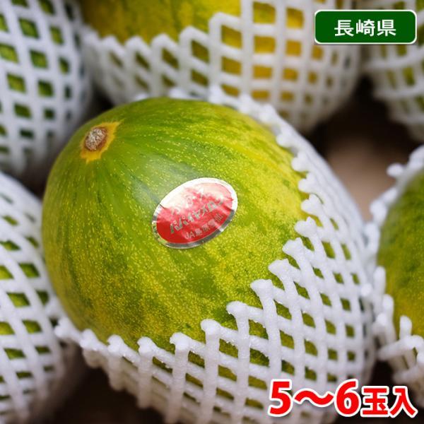 【送料無料】長崎県産 パパイヤメロン 秀品 5〜8玉入(箱)