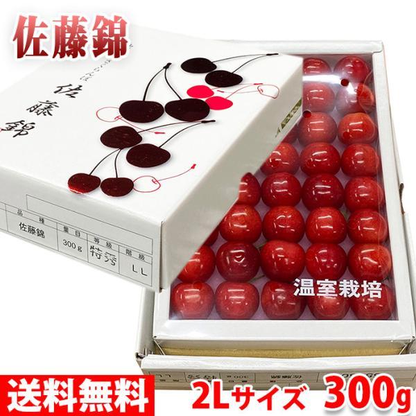 【送料無料】山形県産 さくらんぼ 佐藤錦 2Lサイズ(40粒入り)300g 化粧箱