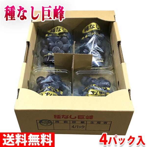 送料無料 福岡県産 種なし巨峰 秀品 4パック入り(箱)