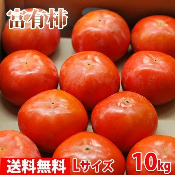 送料無料 奈良県産 富有柿 秀品・L(約42玉入り)10kg箱