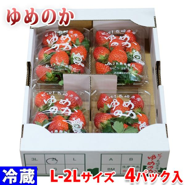 長崎県産いちご ゆめのか 2Lサイズ 250g×4パック入り/箱