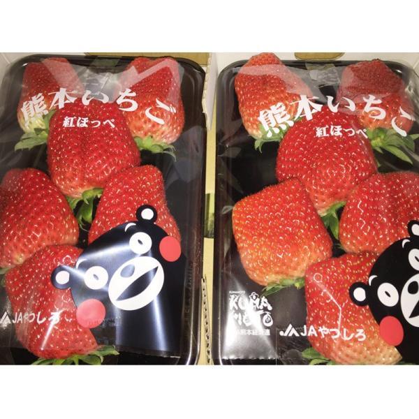 熊本県産 いちご 紅ほっぺ 4L 秀 270g×2パック