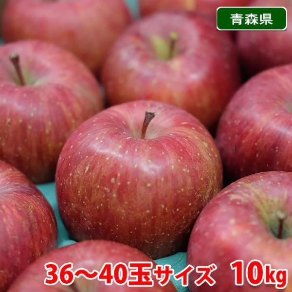 【送料無料】青森県産 サンふじ 甚八りんご 36〜40玉サイズ 10kg