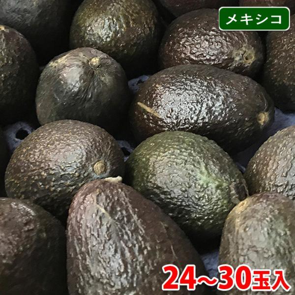 【送料無料】メキシコ産 アボカド 24〜30玉入り(1箱)