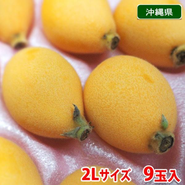 【送料無料】沖縄県産 びわ 2Lサイズ 秀品 9玉入り(化粧箱)