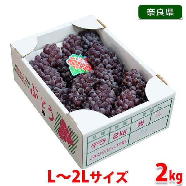 奈良県産 デラウエア 秀品 Lサイズ 約2kg(1箱)