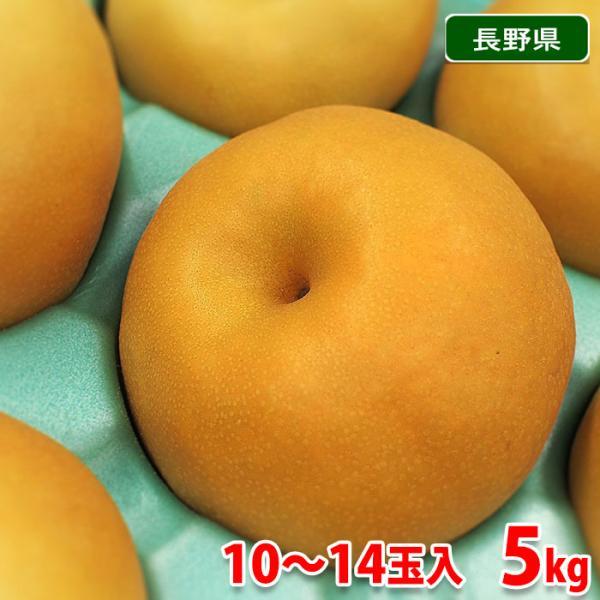 長野県産 梨 南水(なんすい) 秀品 10〜14玉入り 5kg箱