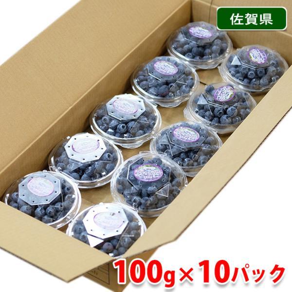 【送料無料】佐賀県産 ブルーベリー 秀品 100g×10パック入り(1箱)