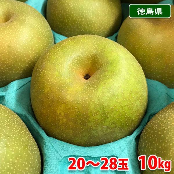送料無料 徳島県産 梨 幸水 20〜28玉入り 10kg