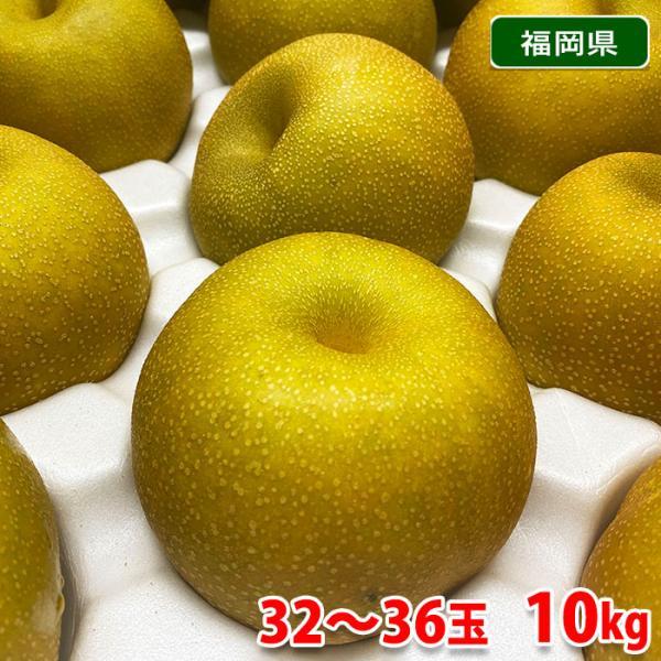 送料無料 福岡県産 梨 幸水(こうすい)秀品 32〜36玉入り 10kg