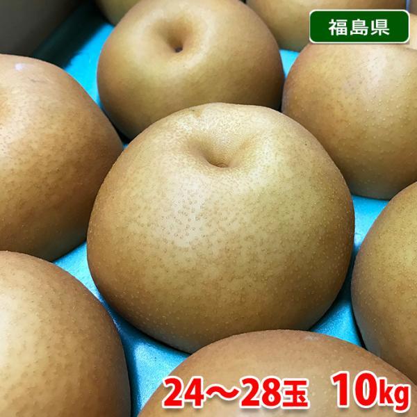 送料無料 福島県産 梨 新高  24〜28玉入り 10kg