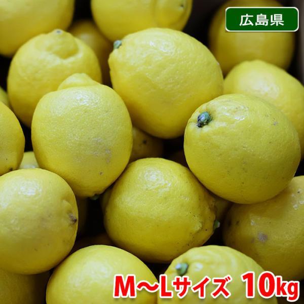 送料無料 広島県産 レモン(イエローレモン) M〜Lサイズ 10kg/箱