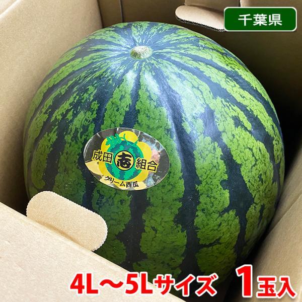 【送料無料】千葉県産 成田西瓜(クリーム西瓜)秀品 4L〜5Lサイズ 1玉入(箱)