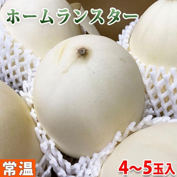茨城県産 メロン ホームランスター 秀品 2L〜3Lサイズ 4〜5玉入り(箱)