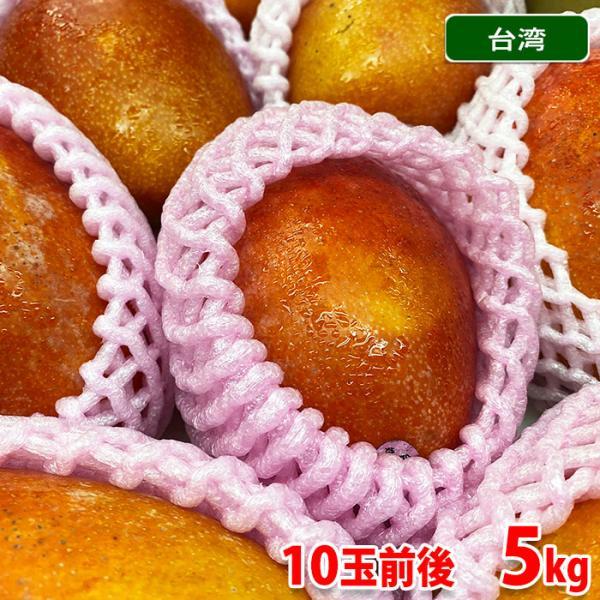 送料無料 台湾産 完熟マンゴー(愛文マンゴー) 10玉前後入 5kg