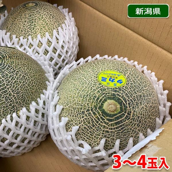 新潟県産 タカミメロン 秀品 3L〜4Lサイズ 3〜4玉入(箱)