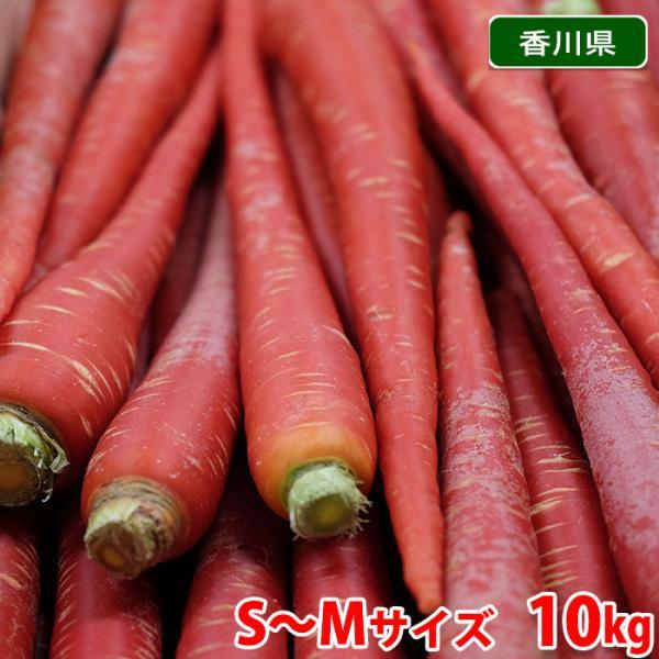 【送料無料】香川県産 金時人参 約10kg 秀 Mサイズ 箱