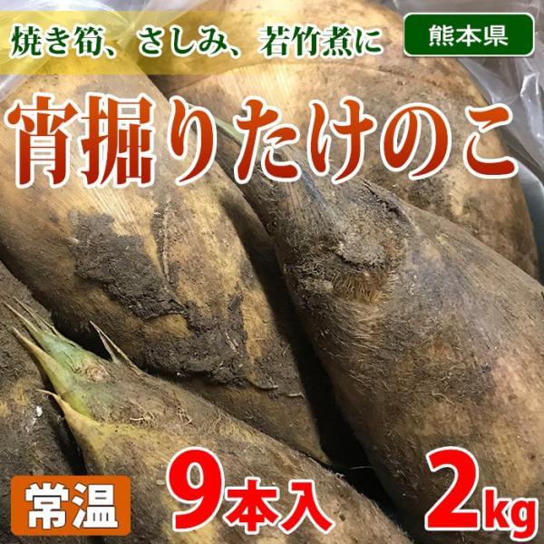 熊本県産 宵掘りたけのこ 9本入り 2kg
