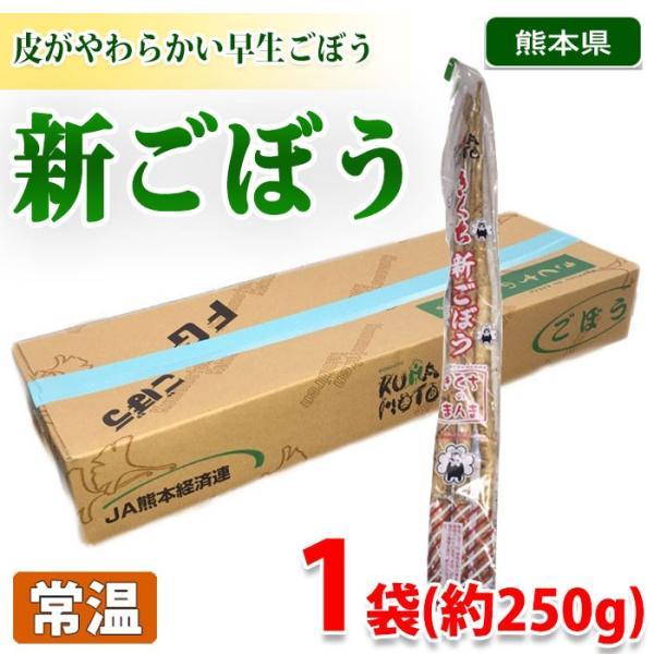 熊本県産 新ごぼう 250g(1袋)