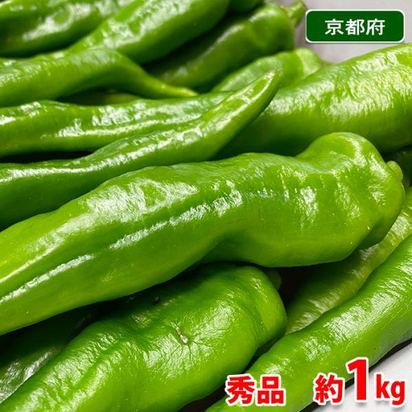 京都府産 万願寺とうがらし 秀品 1kg