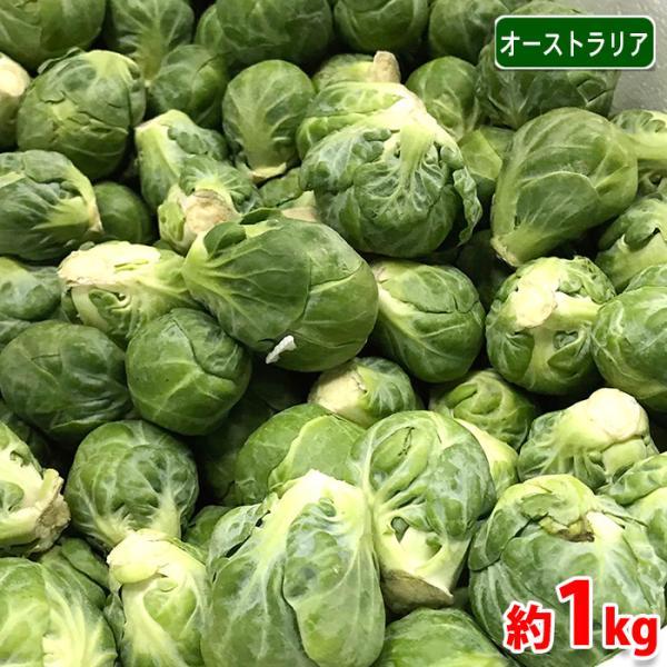 オーストラリア産 芽キャベツ 1kg(バラ詰め)/袋