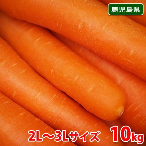 【送料無料】鹿児島県産 にんじん 3Lサイズ 10kg