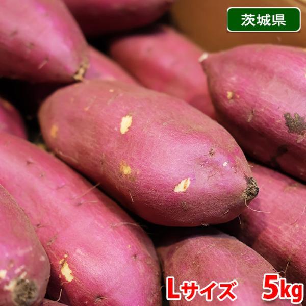 茨城県産(旭村) さつまいも シルクスイート Lサイズ(約18本入) 5kg