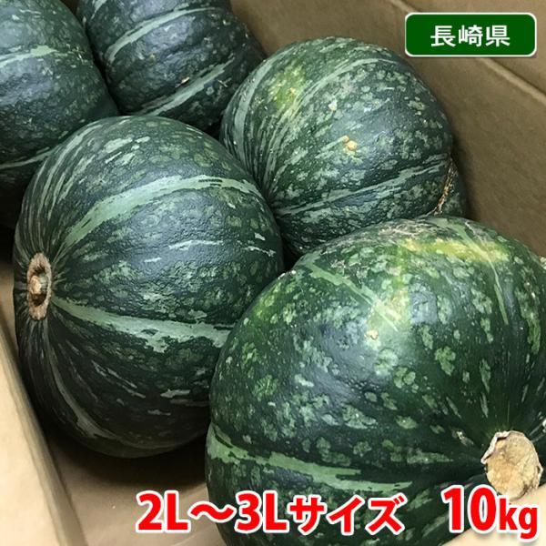 送料無料 長崎県産 かぼちゃ A等級 2L〜3Lサイズ 5〜6玉入 10kg(1箱)