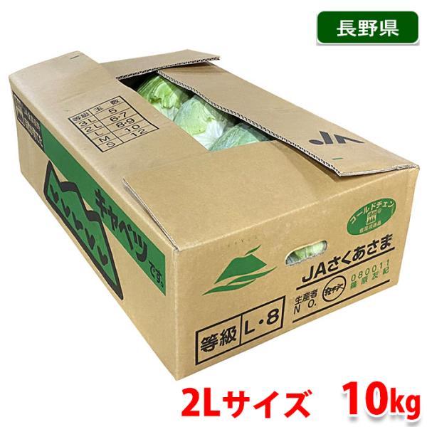【送料無料】長野県産 キャベツ 秀品 2Lサイズ 6〜7玉入 10kg